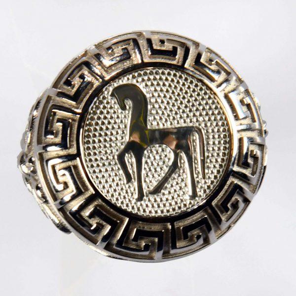anello bianco cavallo bianco