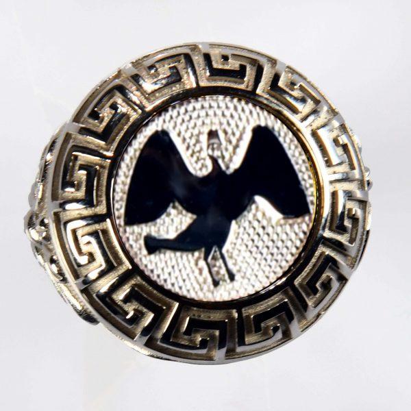 anello bianco cigno bianco