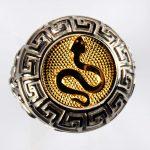 anello bianco vipera gialla