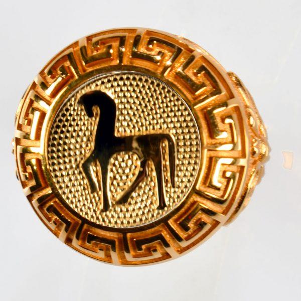 anello rosso cavallo giallo