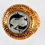 anello rosso delfinibianchi